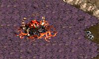 Starcraft Flash Action 5