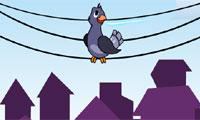 Electric Pigeon